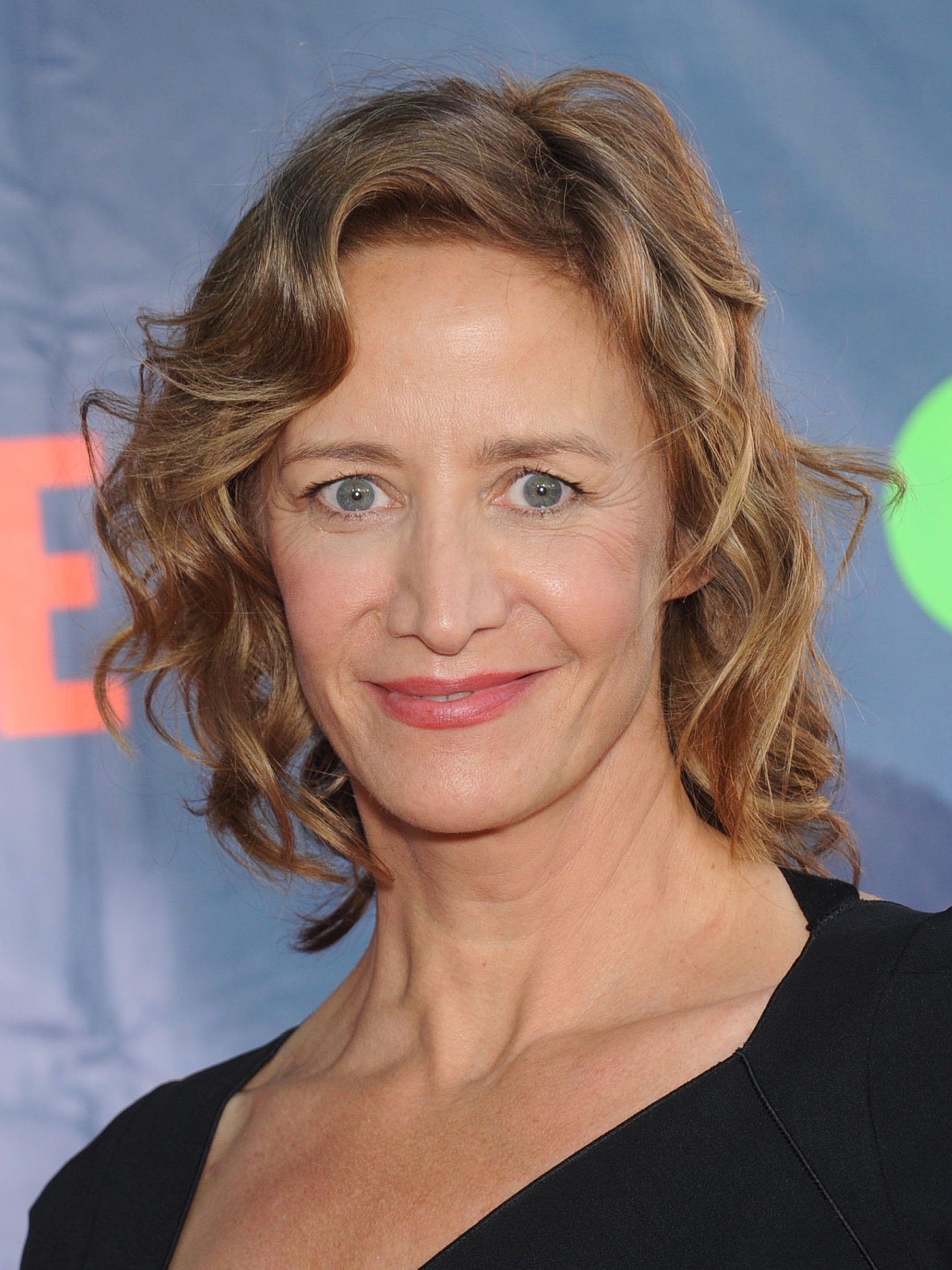 Forum on this topic: Sanam Chaudhry, janet-mcteer-born-1961/